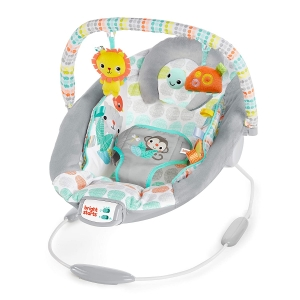 Bright Starts Whimsical Wild Cradling Bouncer Seat – Price Drop – $19.99 (was $34.99)