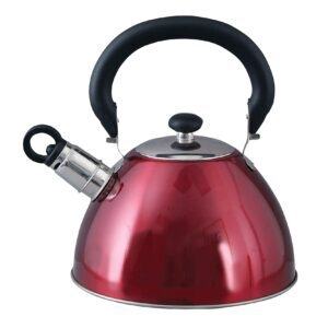 Mr. Coffee Morbern Stainless Steel Whistling Tea Kettle – Price Drop – $9 (was $17.99)